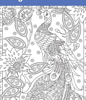 Colouring Pages & Bible Journalling